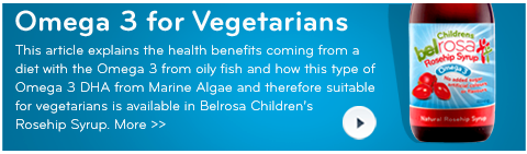 Omega 3 for Vegetarians Publication